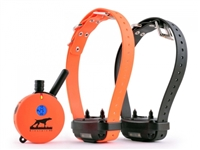 E-Collar 2 Dog 1 Mile Plus Upland Hunting Dog Remote Trainer