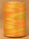 814 - Citrus Star Variegated machine Quilting 1200 yd