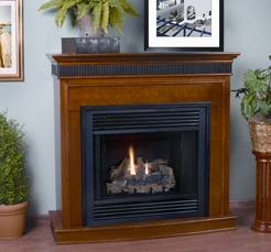 Fireplaceinsert.com, Comfort Flame Direct Vent Gas Fireplace Bristol