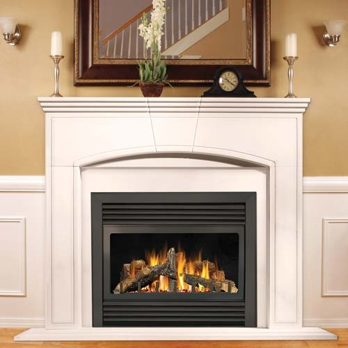 Napoleon GD33 Fireplace