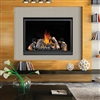 Napoleon HD46, Napoleon HD46 Gas Fireplace, Napoleon HD46 Direct Vent Gas Fireplace, HD46 Gas Fireplace, Napoleon HD46 Direct Vent Gas Fireplace Clean Face HD Series