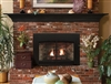 White Mountain Hearth by Empire Direct Vent Gas Fireplace Insert Insbrook