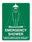 EMERGENCY SHOWER 450X300 MTL