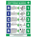 SOFT TISSUE INJURIES POSTER