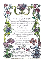 """The Florist"" Botanical Coloring Notecards"