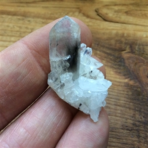 Brookite in quartz Crystal cluster