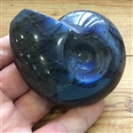 Labradorite Ammonite Carving
