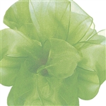 Offray Simply Sheer Asiana Ribbon-539 Peapod