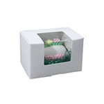 1/4 lb Easter Egg Box - White with Window