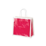 San Francisco Shopping Bags-Medium-Fillmore Fuchsia