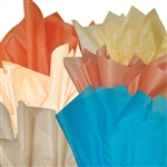 Southwest Color Tissue Assortment