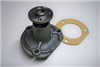830862M91 Massey Ferguson Water Pump with Gasket