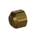 SAE Cap Brass Fitting