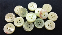 3mm Thick 3-Hole Trocas Shell Buttons