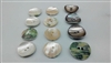 Tamagai Shell Buttons