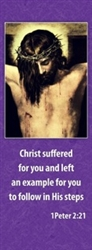 Lent Christ Suffering Banner 3.3m x 0.5m (LARGE NO 20)