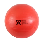 ABS Exercise Gym Ball 55cm, Anti Burst Gym Ball, 55cm Gym Ball, 55cm Exercise Ball, Gym Balls, Exercise Balls, Fitness Balls, Anti Burst Gym Balls, Commercial Gym Balls,