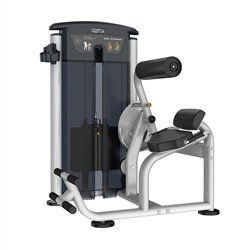 Impulse Fitness IT9532 Back Extension Machine