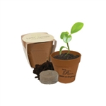 Custom printed mini Bamboo Blossom planting kit
