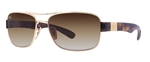 RB3522-001/13  - Arista w/Brown Gradient lens