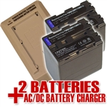Sony NP-QM91D Battery & Charger Combo