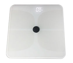 Health & Wellness Scale