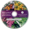 Voices of NicA CD