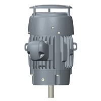 US Electric Corro Duty Motor - C100P1FSCR