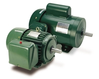 Teco Farm Duty Electric Motor - FD0/34