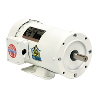 US Electric Washdown Motor - WD10P1DC