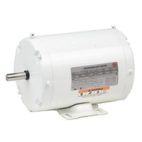 US Electric Washdown Motor - WD10P2D