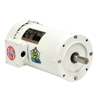 US Electric Washdown Motor - WD10P2DCR