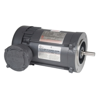 US Electric Hazardous Dual Label Motor - X10E2BCR
