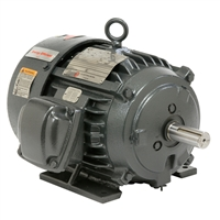 US Electric Hazardous Dual Label Motor - X100P2B