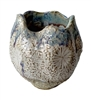 Blue &Tan-White Sand Dollar Vase  V226B