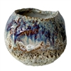 Blue &Tan-White Sand Dollar Vase  V226D