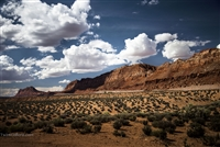 Grand Canyon Landscape Photography |  Mesa Vista Clouds Blue Sky