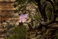 Landscape Photography | Angels Window | Cape Royal | North Rim | Grand Canyon