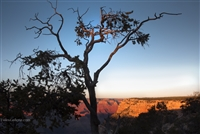 Landscape Photography | Grand Canyon | South Side
