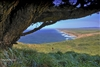 Landscape Photography Prints | Point Reyes California