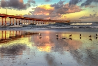 Photography Print Landscape: Ocean Beach Pier Sunrise with Seagulls