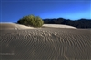 Landscape Photography | Ripples in Sand Dunes