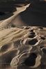 Fine Art Photography | Landscape Photography | Recent Steps in the Sand