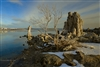 Fine Art Photography | Landscape Photography | Sunset at Mono Lake with Tufa and Tree