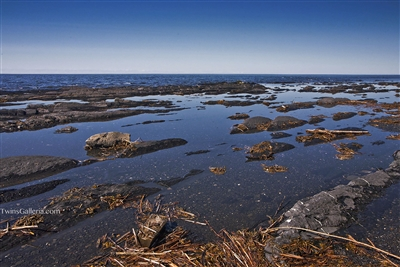 Landscape Photography | Rocks and Weeds in the Ocean | Fine Art Photography