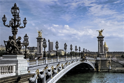The Pont Alexandre III Bridge