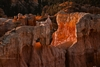 Bryce Canyon National Park Landscape: Photography Print: Sunrise Canyon