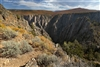 Black Canyon of the Gunnison: Covered with Flowers : Photography Prints:
