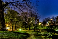 NYC Fine Art Photography Print of a Beautiful Night in Central Park