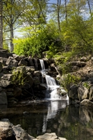 NYC Fine Art Photography Print of Beautiful Waterfall in Central Park